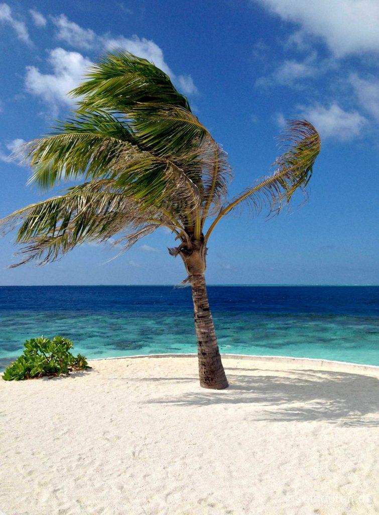 10-Der-schönste-Malediven-Strand