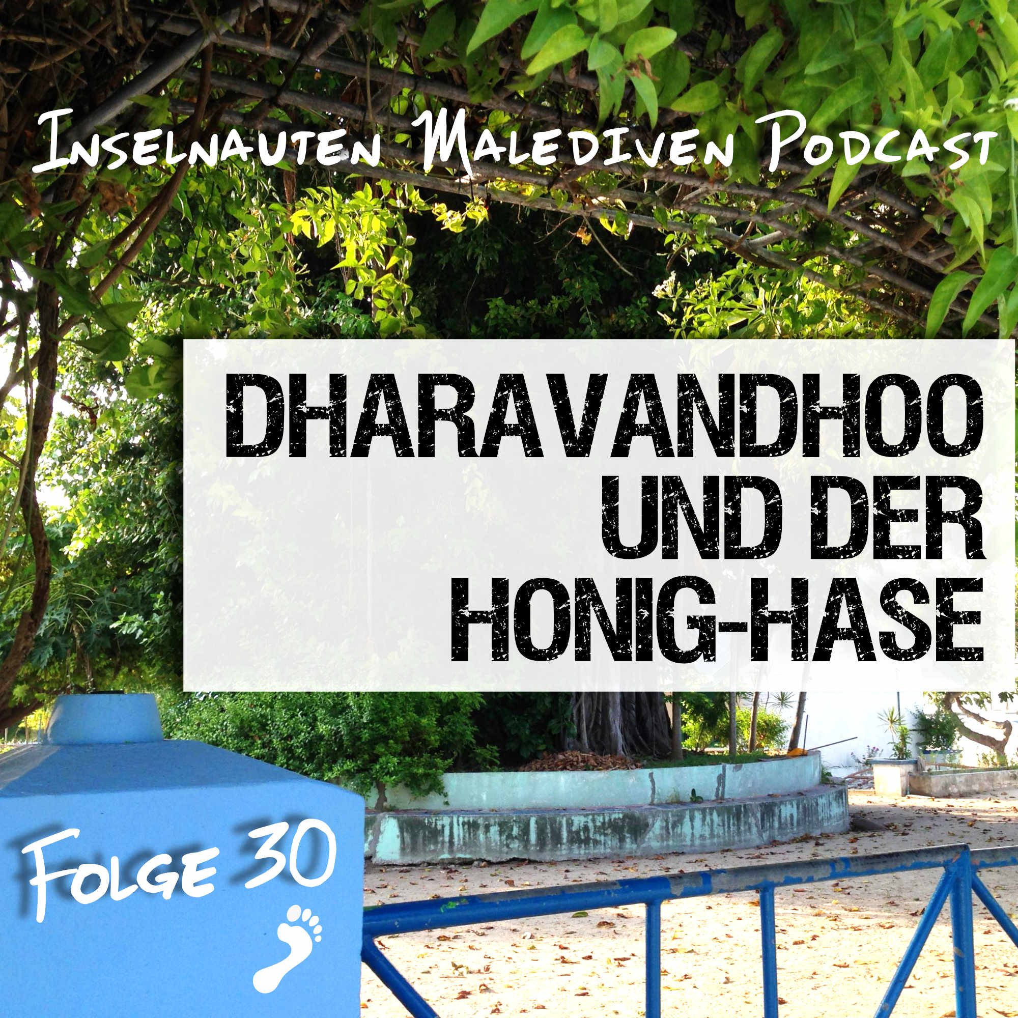 Dharavandhoo Honig Hase - Inselnauten