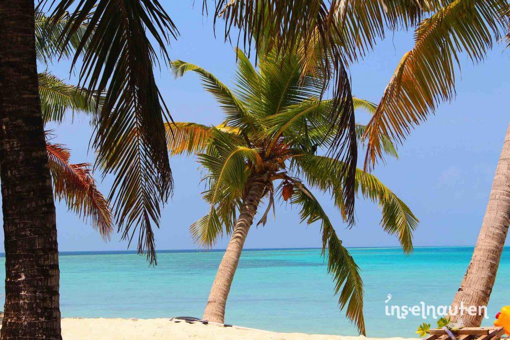Sri lanka malediven reise buchen