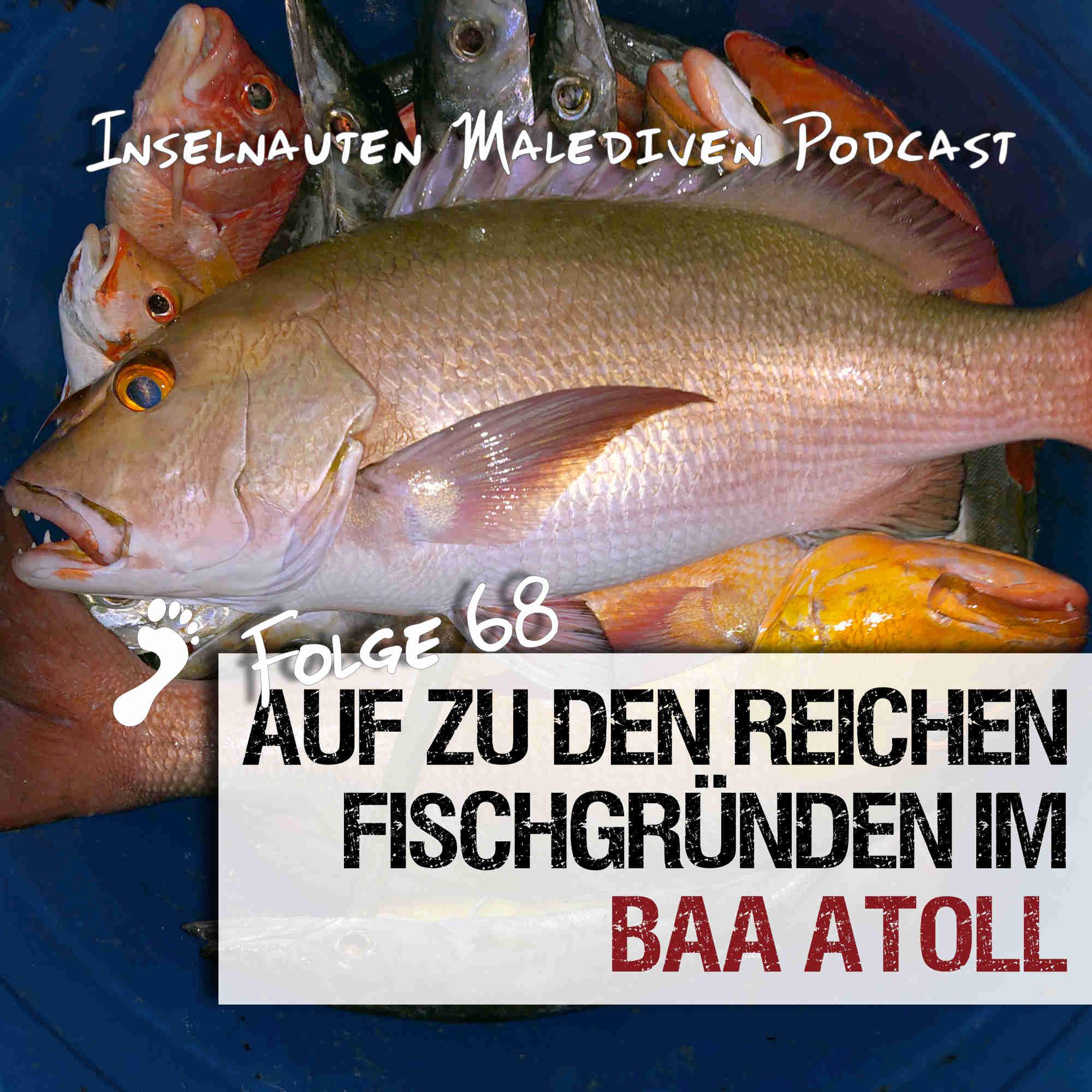 Auf-zu-den-reichen-Fischgründen-im-Baa-Atoll